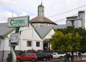 Case COTREL